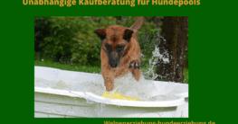 hundepool-test-
